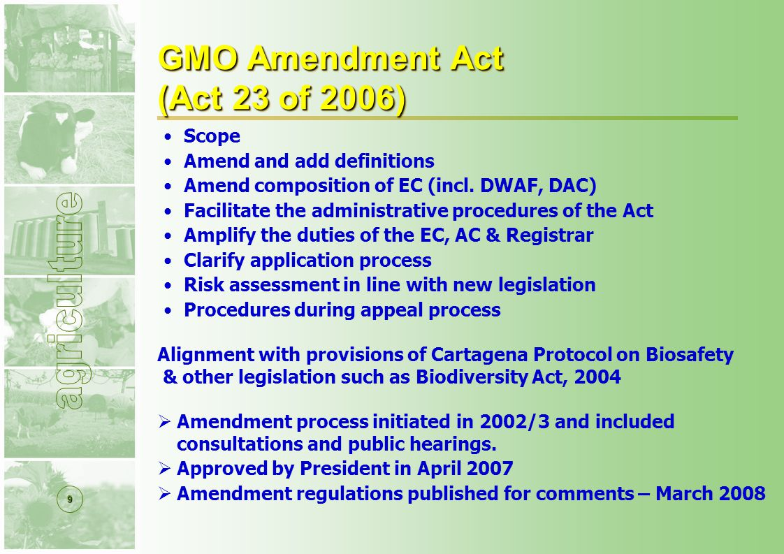 10 GMO Act : Regulatory Instrument Registrar Advisory Committee (AC) Executive Council (EC) Appointed by Minister Administration Instructions by EC (applications & permits) Ensure Compliance Appoint inspectors National Advisory Body Primary safety assessment of applications Scientific experts Subcommittee –more expertise & capacity GMO Decision Makers DoA (Chair), DST, DEAT, DoH, the dti, DoL, AC Chair (DAC & DWAF) Decisions – consensus based TIMELINE FOR APPLICATIONS: 30-180 DAYS