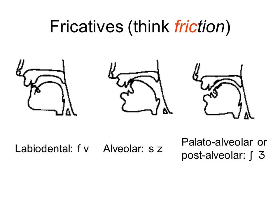 Fricatives (think friction) Labiodental: f vAlveolar: s z Palato-alveolar or post-alveolar: ʃ Ʒ