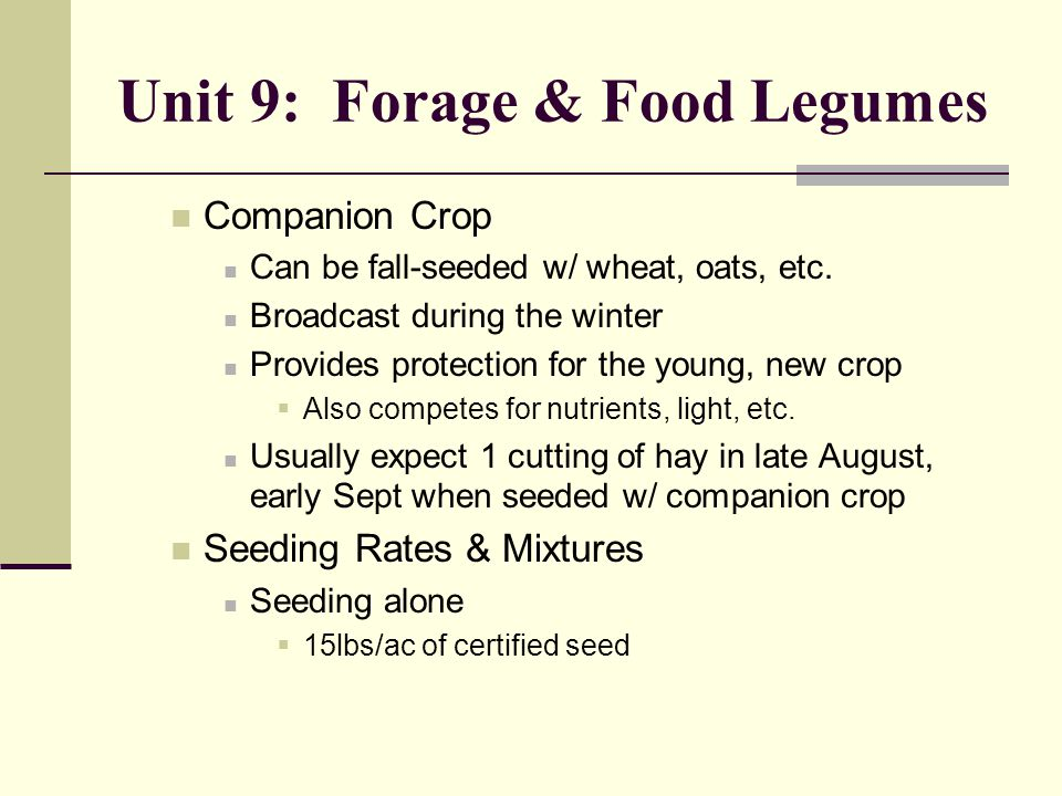 Unit 9: Forage & Food Legumes Companion Crop Can be fall-seeded w/ wheat, oats, etc.