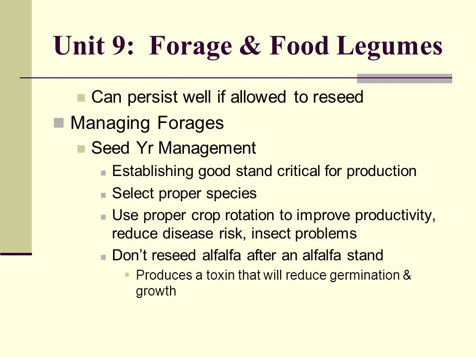 Unit 9: Forage & Food Legumes Can persist well if allowed to reseed Managing Forages Seed Yr Management Establishing good stand critical for production Select proper species Use proper crop rotation to improve productivity, reduce disease risk, insect problems Don't reseed alfalfa after an alfalfa stand  Produces a toxin that will reduce germination & growth