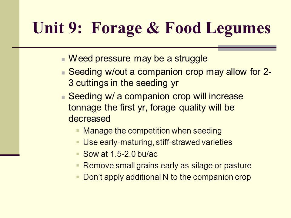 Unit 9: Forage & Food Legumes Weed pressure may be a struggle Seeding w/out a companion crop may allow for 2- 3 cuttings in the seeding yr Seeding w/ a companion crop will increase tonnage the first yr, forage quality will be decreased  Manage the competition when seeding  Use early-maturing, stiff-strawed varieties  Sow at 1.5-2.0 bu/ac  Remove small grains early as silage or pasture  Don't apply additional N to the companion crop