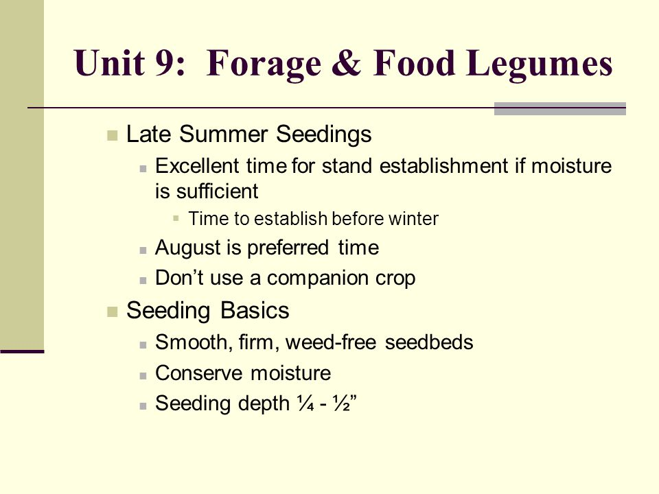 Unit 9: Forage & Food Legumes Late Summer Seedings Excellent time for stand establishment if moisture is sufficient  Time to establish before winter August is preferred time Don't use a companion crop Seeding Basics Smooth, firm, weed-free seedbeds Conserve moisture Seeding depth ¼ - ½