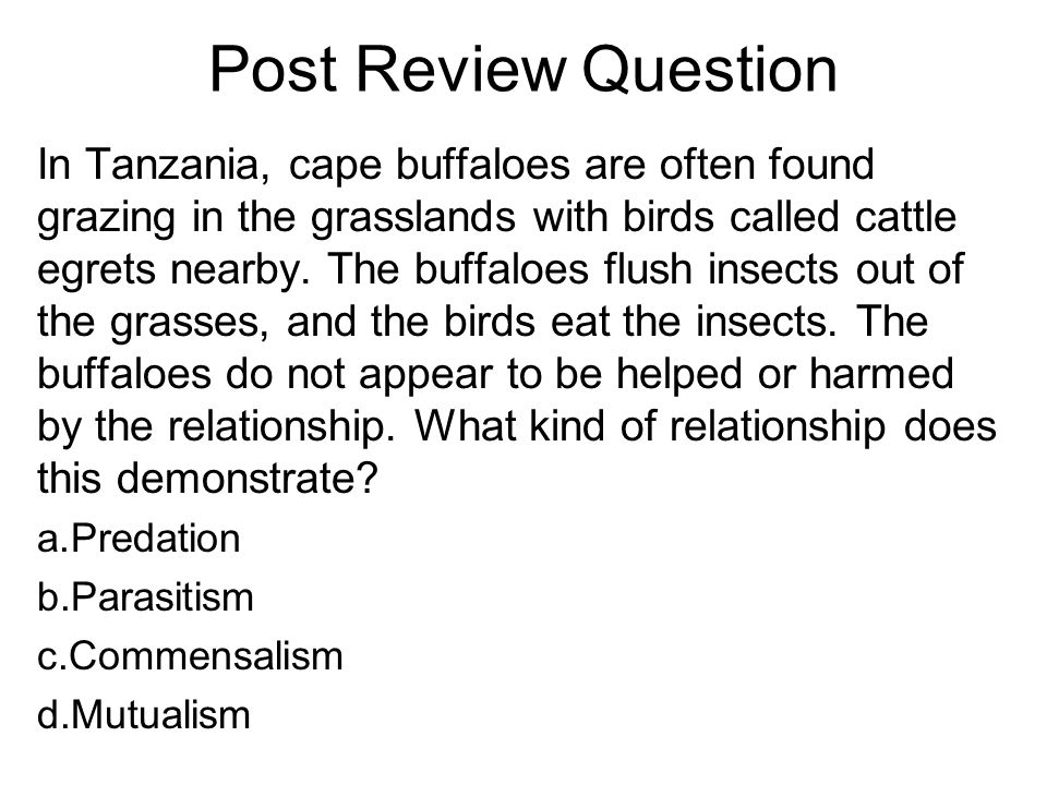 Post Review Question In Tanzania, cape buffaloes are often found grazing in the grasslands with birds called cattle egrets nearby.