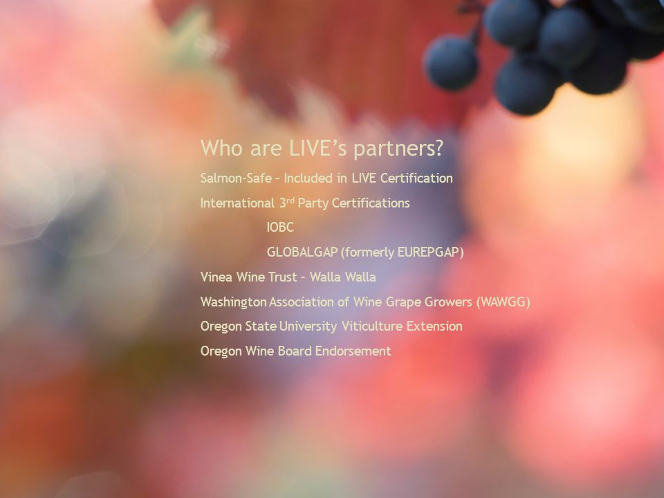 Who are LIVE's partners.