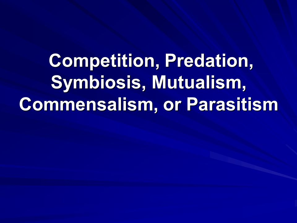 Competition, Predation, Symbiosis, Mutualism, Commensalism, or Parasitism Competition, Predation, Symbiosis, Mutualism, Commensalism, or Parasitism