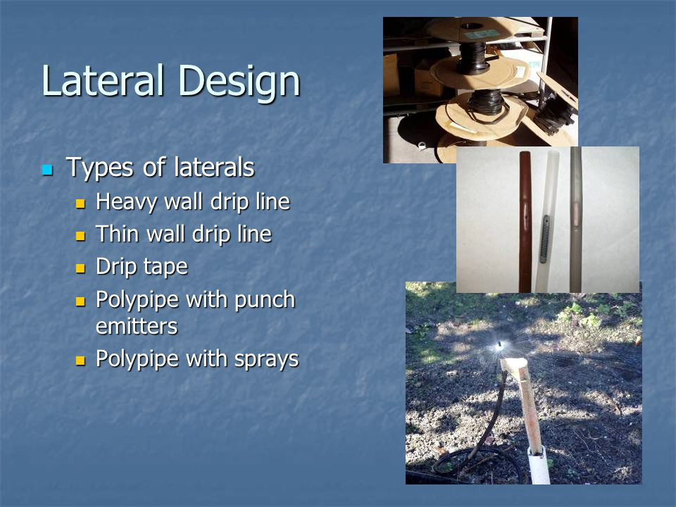 Lateral Design Types of laterals Types of laterals Heavy wall drip line Heavy wall drip line Thin wall drip line Thin wall drip line Drip tape Drip tape Polypipe with punch emitters Polypipe with punch emitters Polypipe with sprays Polypipe with sprays
