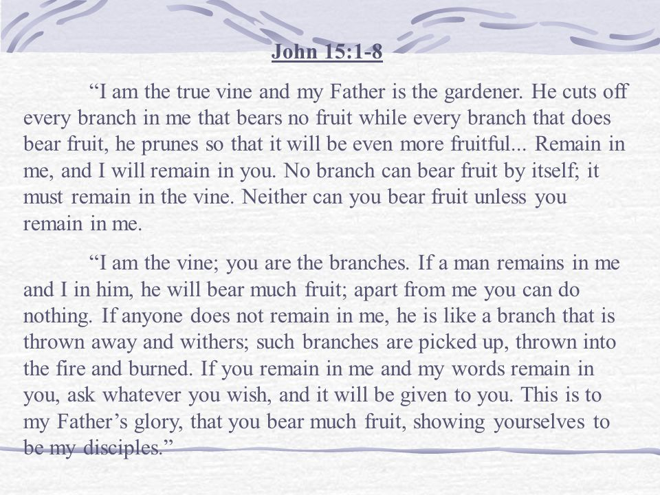 """""""All your care... Would be useless if Jesus Christ himself did not give the quality, the power, and the efficacy to make your care useful. As the bran"""