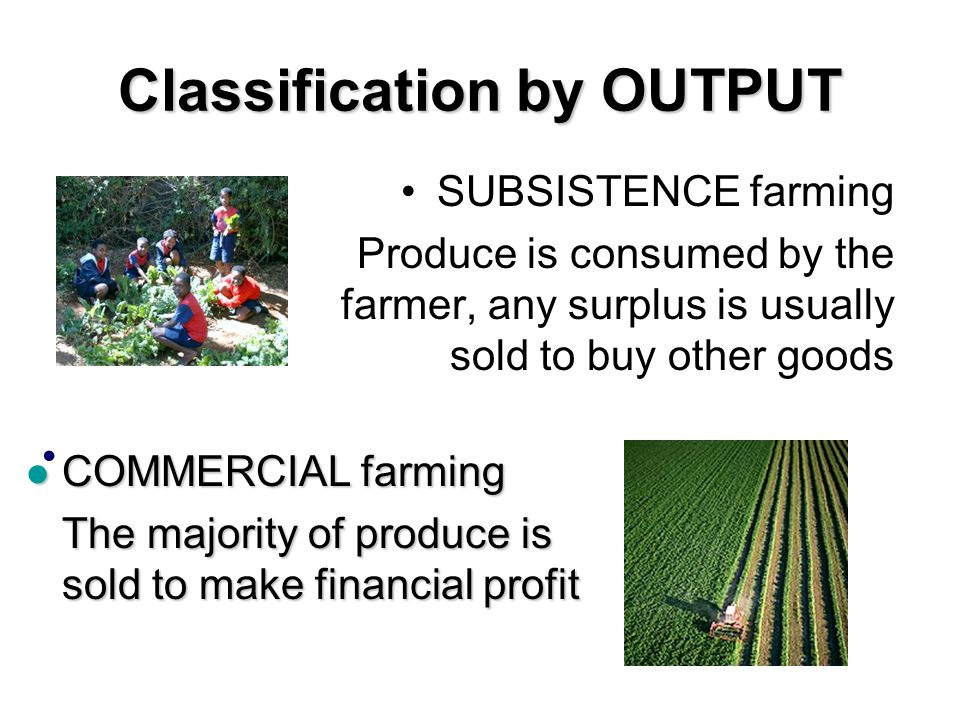 Classification by OUTPUT SUBSISTENCE farming Produce is consumed by the farmer, any surplus is usually sold to buy other goods COMMERCIAL farming COMMERCIAL farming The majority of produce is sold to make financial profit