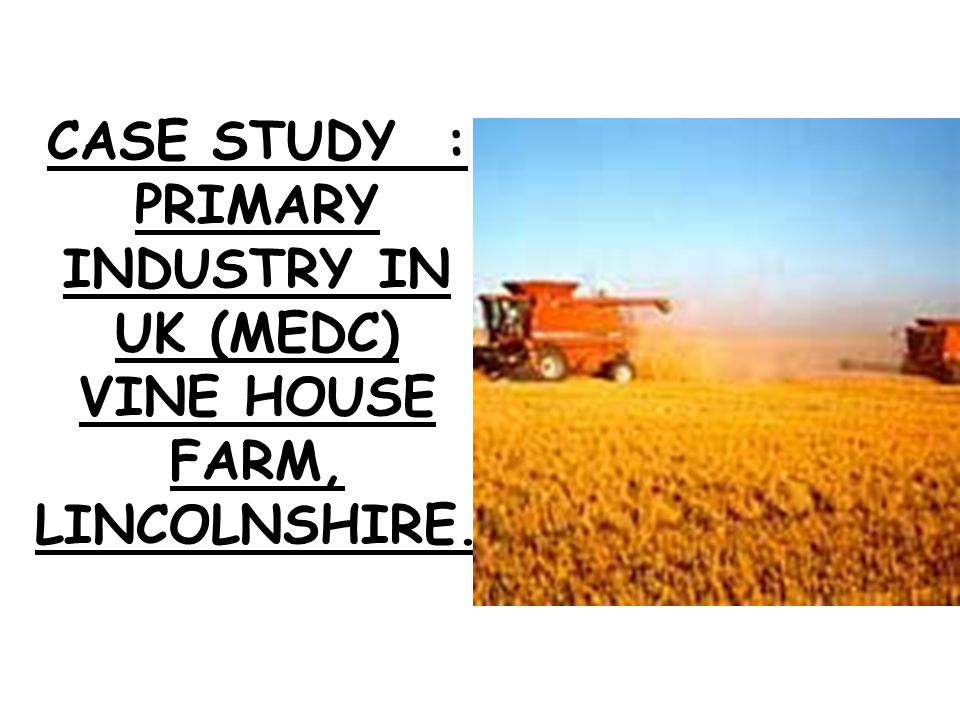 CASE STUDY : PRIMARY INDUSTRY IN UK (MEDC) VINE HOUSE FARM, LINCOLNSHIRE.