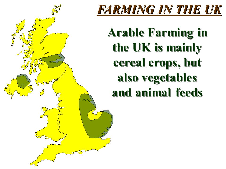 FARMING IN THE UK Arable Farming in the UK is mainly cereal crops, but also vegetables and animal feeds Arable Farming in the UK is mainly cereal crops, but also vegetables and animal feeds