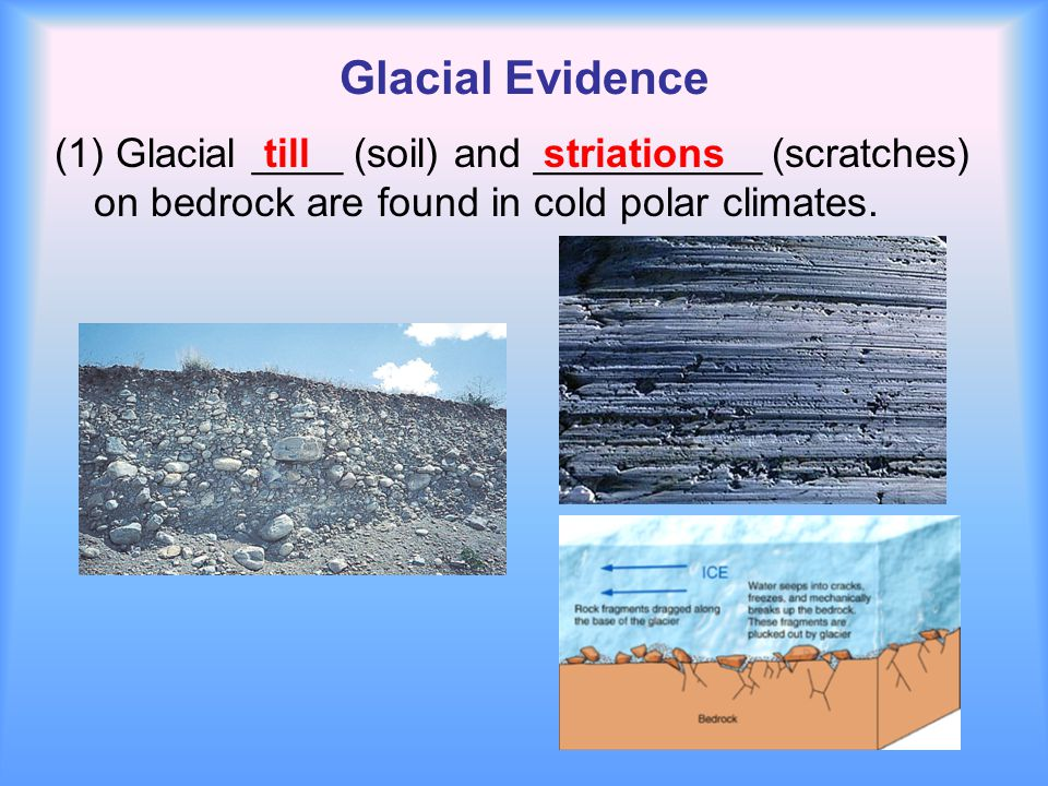 Glacial Evidence (1) Glacial ____ (soil) and __________ (scratches) on bedrock are found in cold polar climates. tillstriations