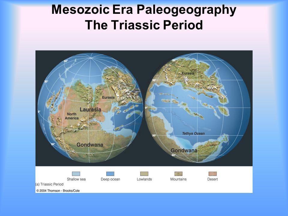 Mesozoic Era Paleogeography The Triassic Period