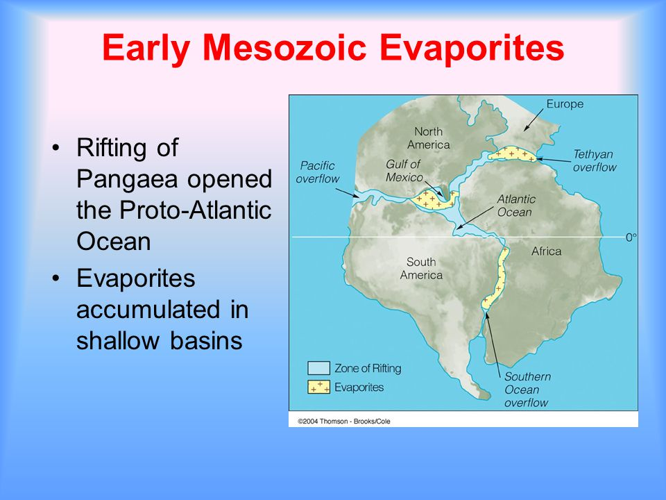 Early Mesozoic Evaporites Rifting of Pangaea opened the Proto-Atlantic Ocean Evaporites accumulated in shallow basins