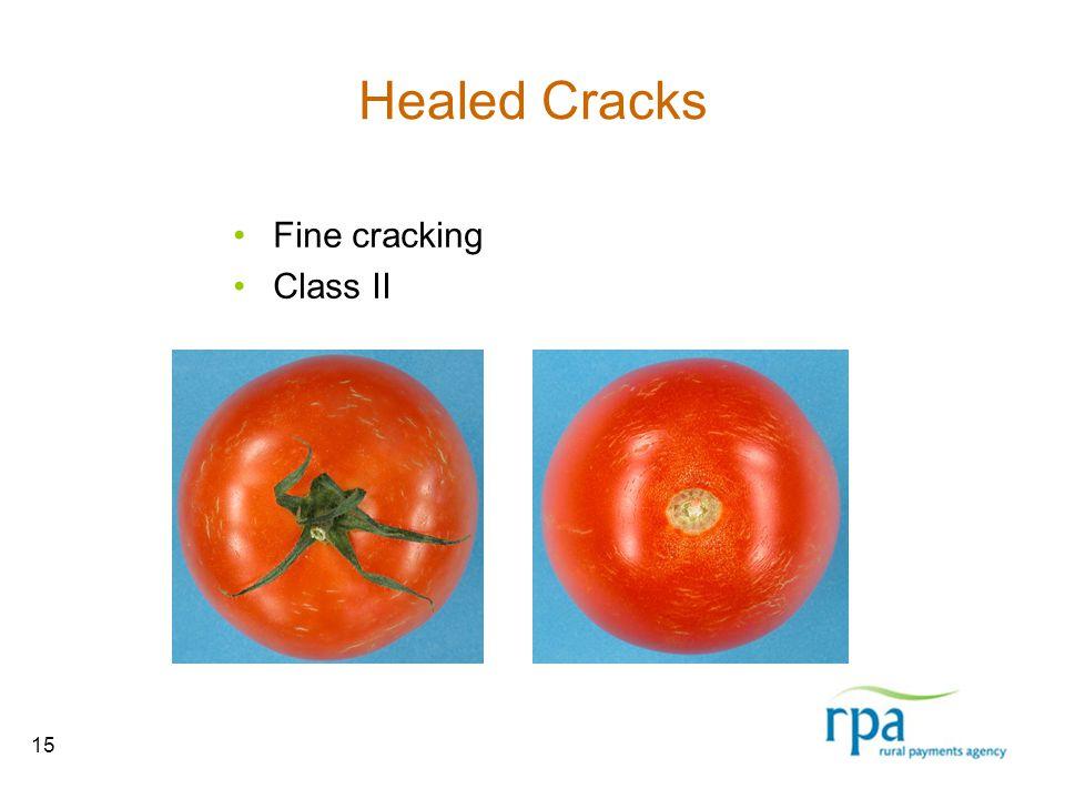 15 Healed Cracks Fine cracking Class II