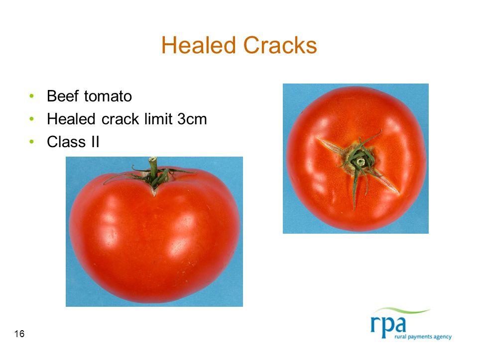 16 Healed Cracks Beef tomato Healed crack limit 3cm Class II