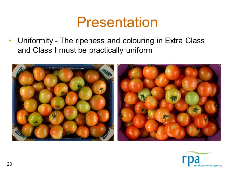 20 Presentation Uniformity - The ripeness and colouring in Extra Class and Class I must be practically uniform