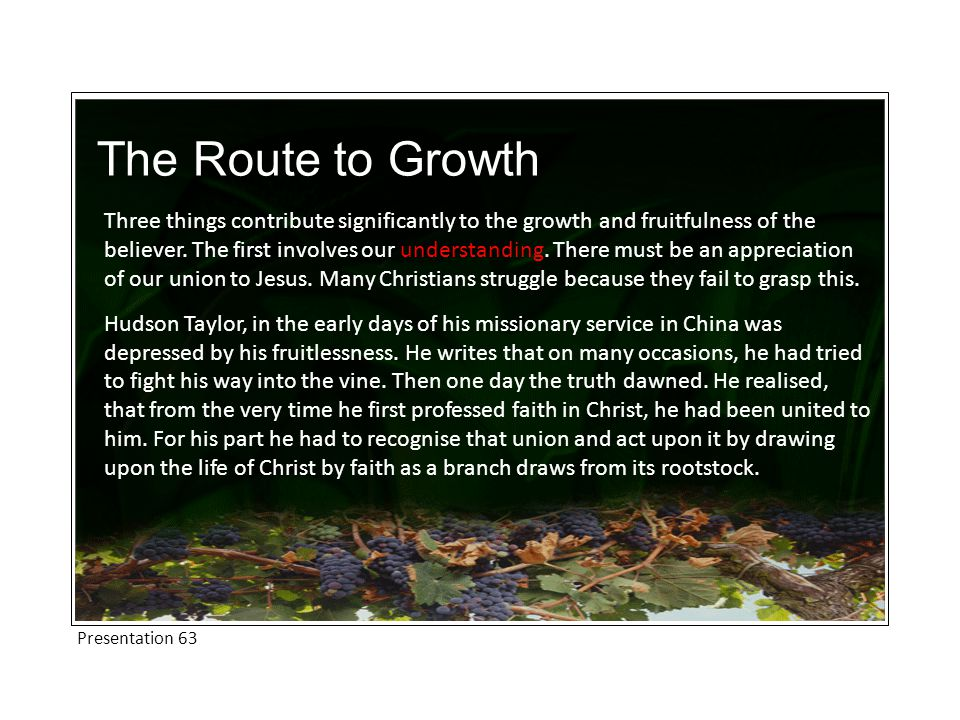 The Route to Growth Three things contribute significantly to the growth and fruitfulness of the believer.