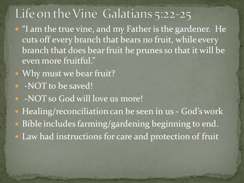 Many metaphorical uses of fruit: fruit for God (Rom.