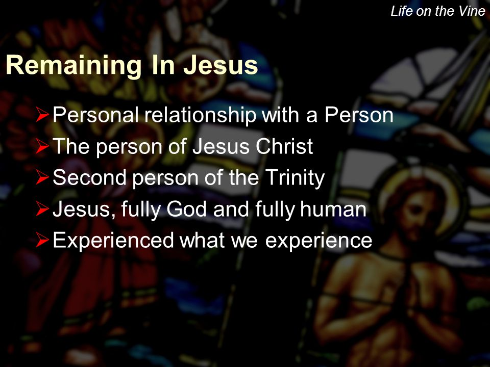 Life on the Vine Remaining In Jesus  Personal relationship with a Person  The person of Jesus Christ  Second person of the Trinity  Jesus, fully God and fully human  Experienced what we experience