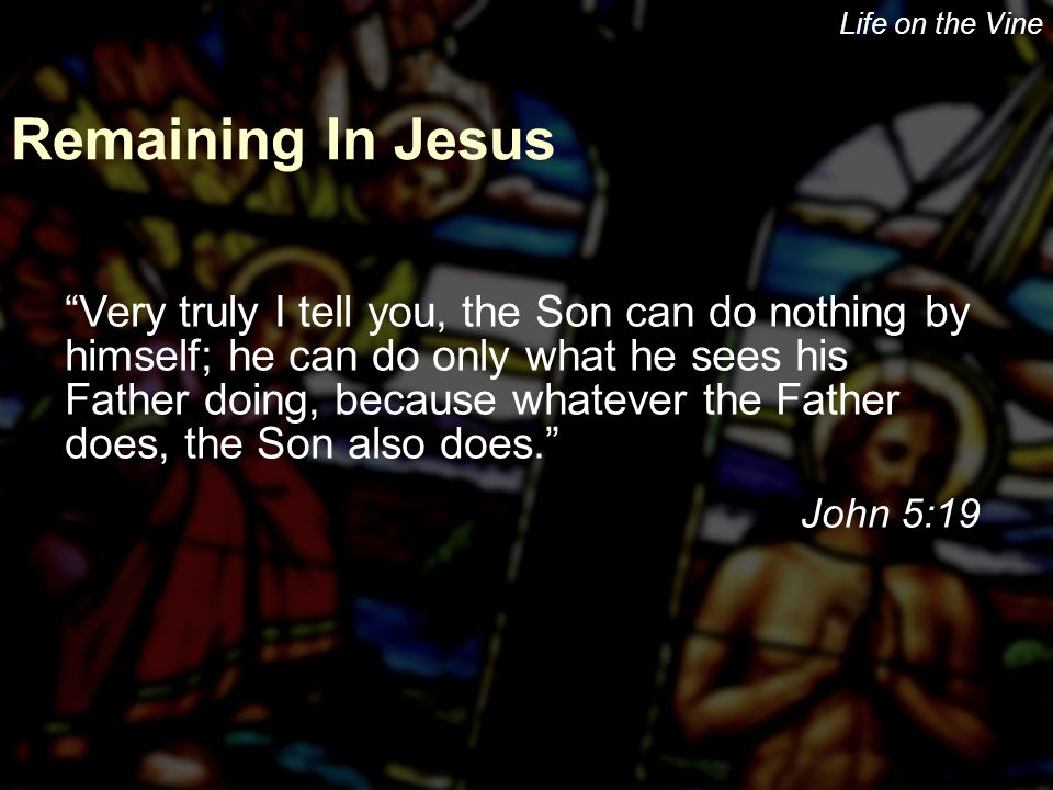 "Life on the Vine Remaining In Jesus ""Very truly I tell you, the Son can do nothing by himself; he can do only what he sees his Father doing, because w"
