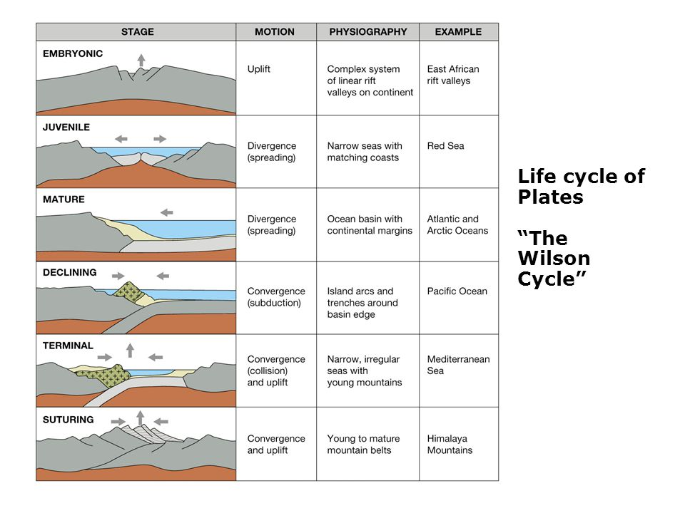 Life cycle of Plates The Wilson Cycle