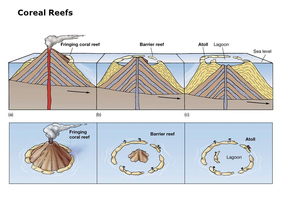 Coreal Reefs