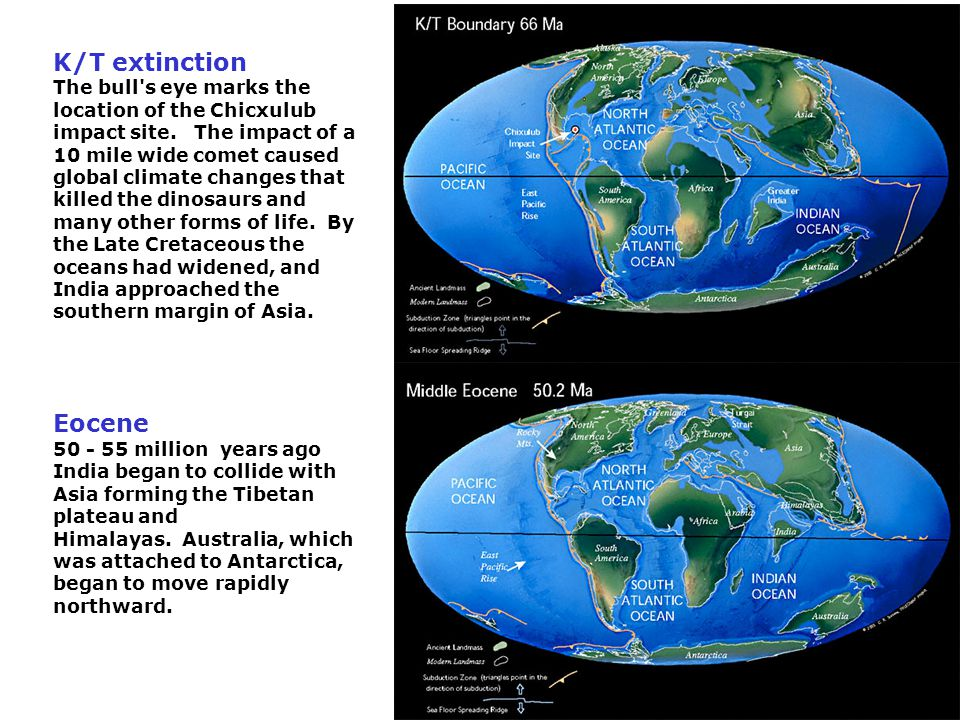 K/T extinction The bull s eye marks the location of the Chicxulub impact site.