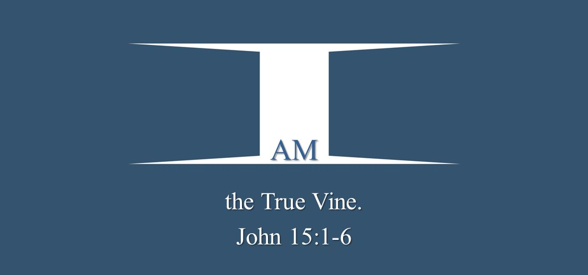 AM the True Vine. John 15:1-6
