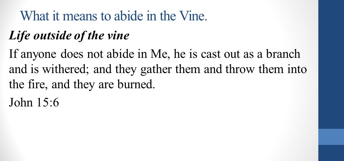 What it means to abide in the Vine.