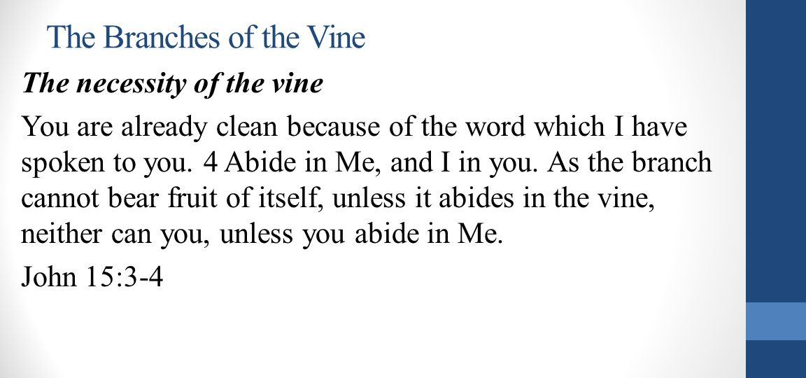 The Branches of the Vine The necessity of the vine You are already clean because of the word which I have spoken to you.