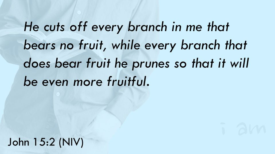 John 15:2 (NIV) He cuts off every branch in me that bears no fruit, while every branch that does bear fruit he prunes so that it will be even more fruitful.
