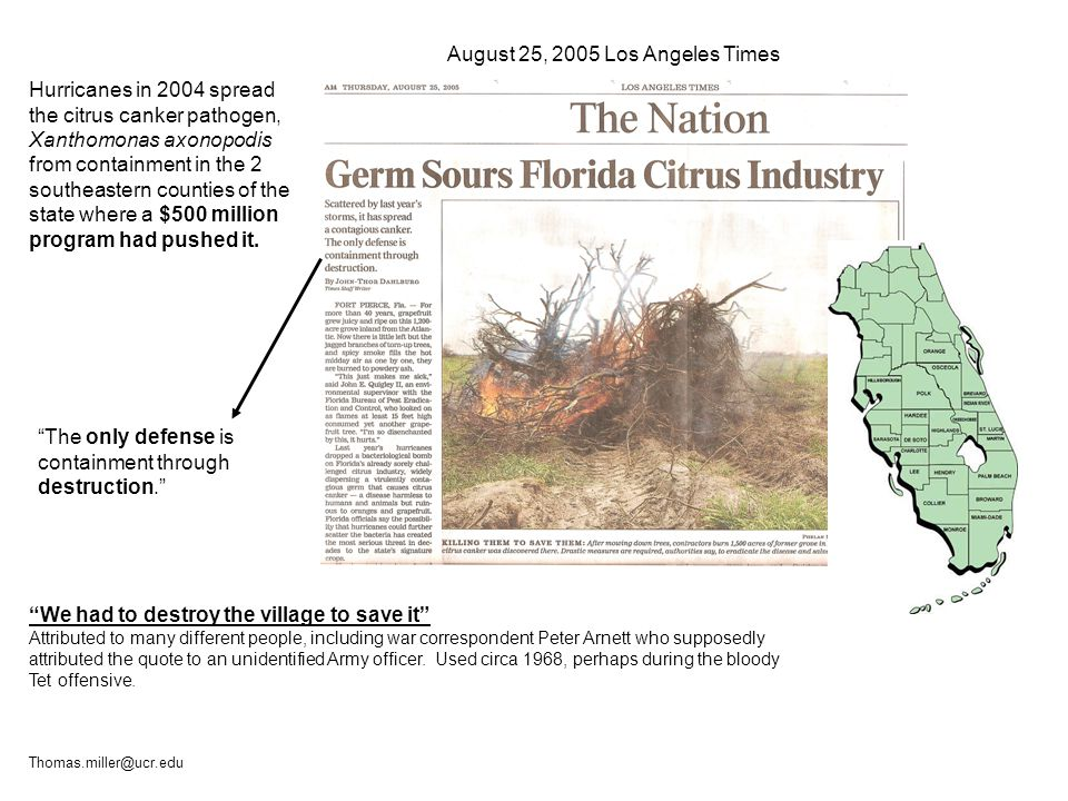 Hurricanes in 2004 spread the citrus canker pathogen, Xanthomonas axonopodis from containment in the 2 southeastern counties of the state where a $500 million program had pushed it.