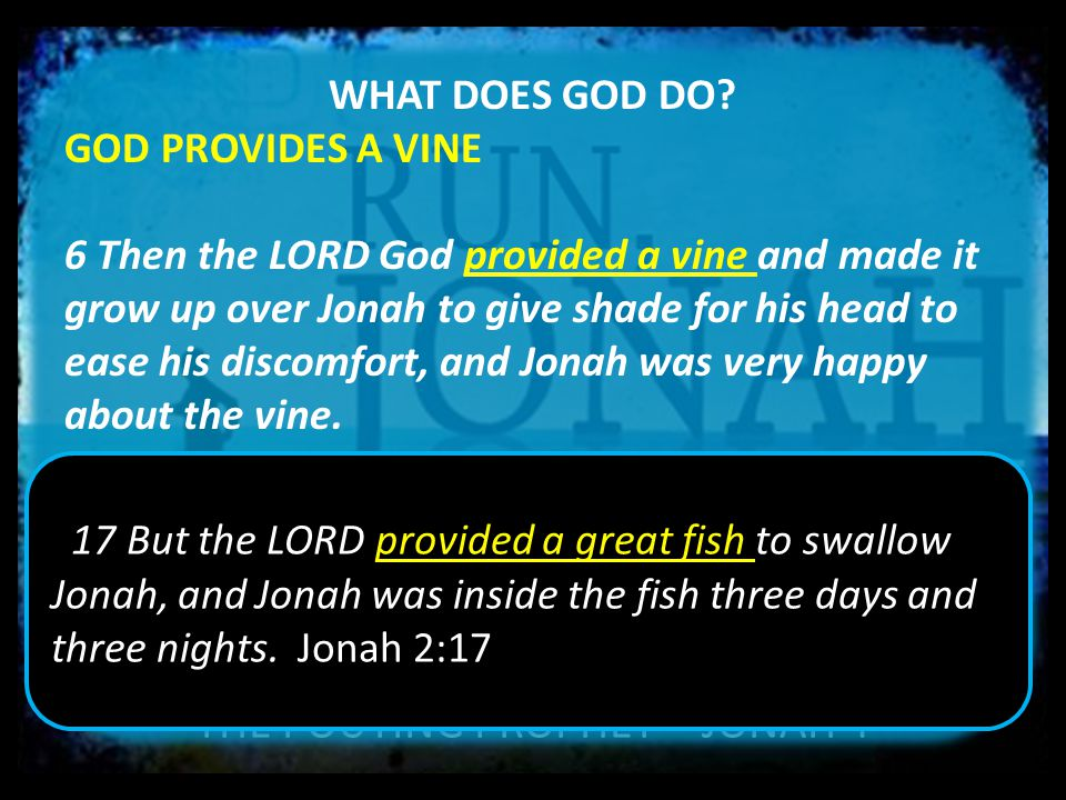 THE POUTING PROPHET – JONAH 4 WHAT DOES GOD DO? GOD PROVIDES A VINE 6 Then the LORD God provided a vine and made it grow up over Jonah to give shade f