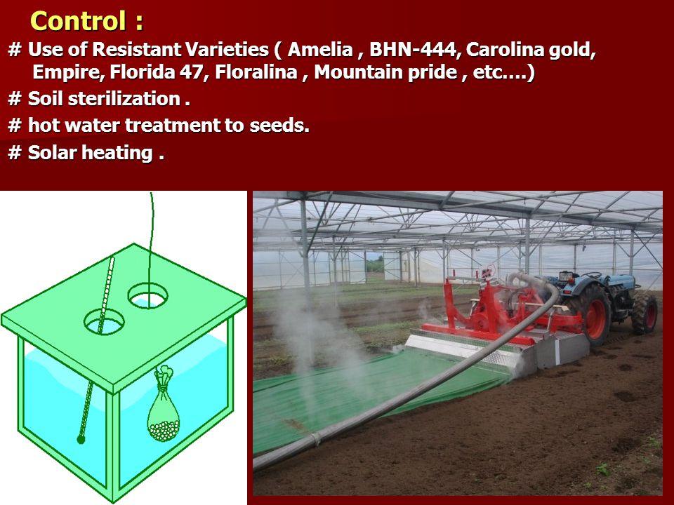 Control : # Use of Resistant Varieties ( Amelia, BHN-444, Carolina gold, Empire, Florida 47, Floralina, Mountain pride, etc….) # Soil sterilization. #