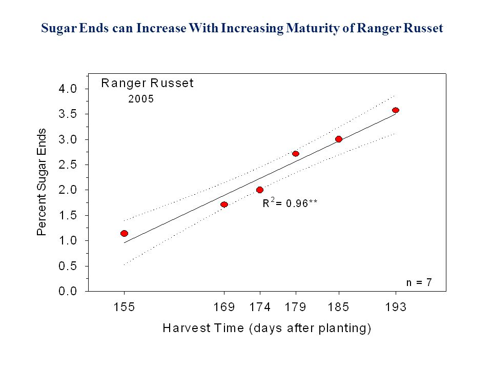Sugar Ends can Increase With Increasing Maturity of Ranger Russet Courtesy Mel Martin, J.R. Simplot Co.
