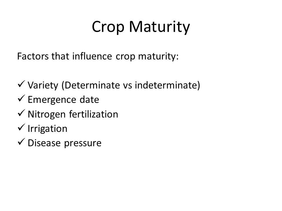 Crop Maturity Factors that influence crop maturity: Variety (Determinate vs indeterminate) Emergence date Nitrogen fertilization Irrigation Disease pr