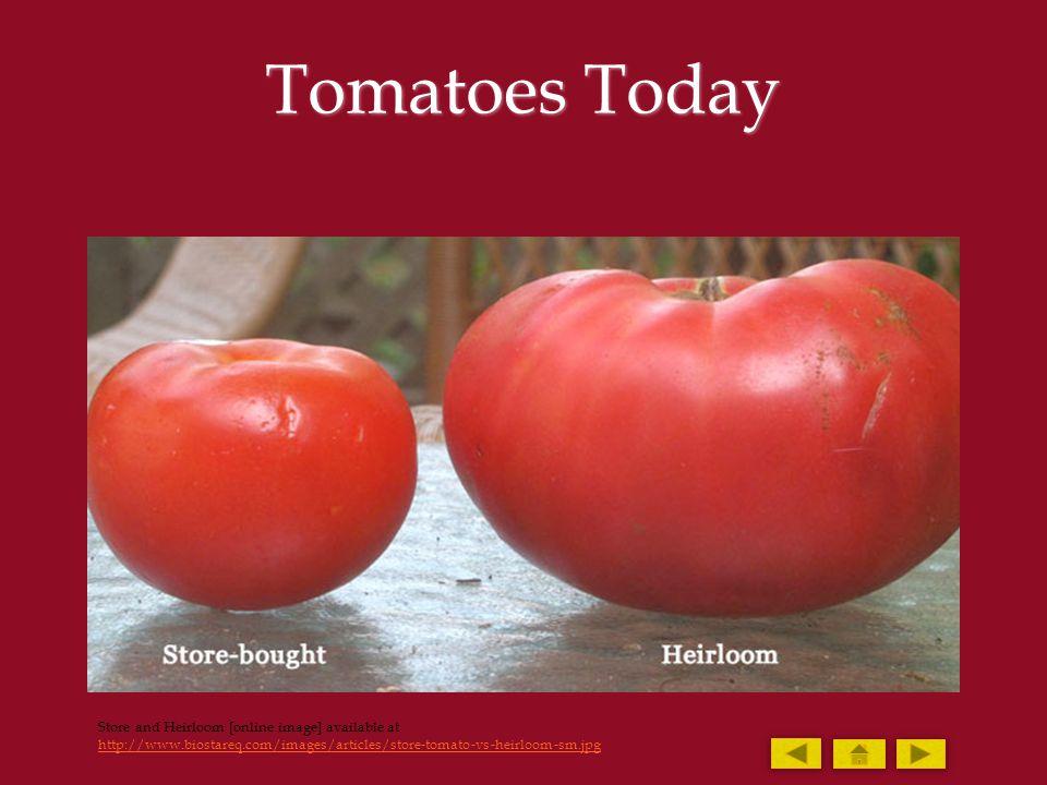 Tomato Hornworm Hornworm [online image] available http://grapeseedfarmproject.files.wordpress.com/2010/07/tomato-horn-worm.jpg