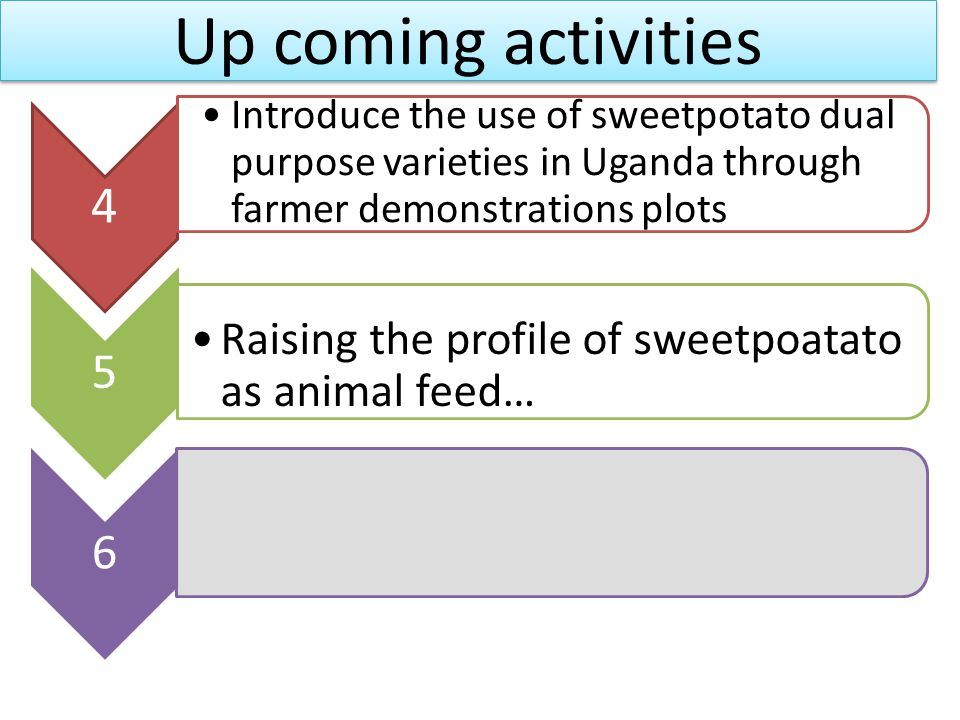 Up coming activities 4 Introduce the use of sweetpotato dual purpose varieties in Uganda through farmer demonstrations plots 5 Raising the profile of