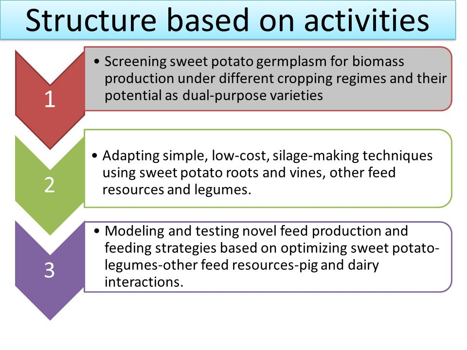 Structure based on activities 1 Screening sweet potato germplasm for biomass production under different cropping regimes and their potential as dual-p