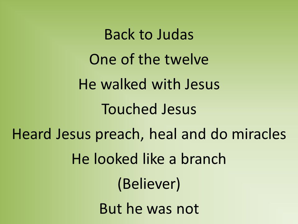 Back to Judas One of the twelve He walked with Jesus Touched Jesus Heard Jesus preach, heal and do miracles He looked like a branch (Believer) But he was not