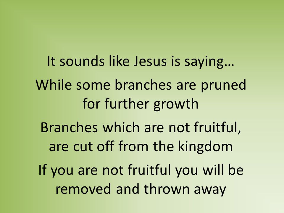 It sounds like Jesus is saying… While some branches are pruned for further growth Branches which are not fruitful, are cut off from the kingdom If you are not fruitful you will be removed and thrown away