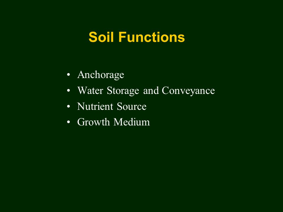 Soil Functions Anchorage Water Storage and Conveyance Nutrient Source Growth Medium
