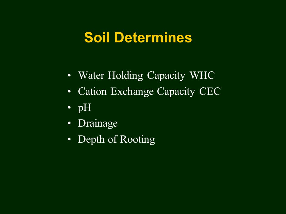 Soil Determines Water Holding Capacity WHC Cation Exchange Capacity CEC pH Drainage Depth of Rooting