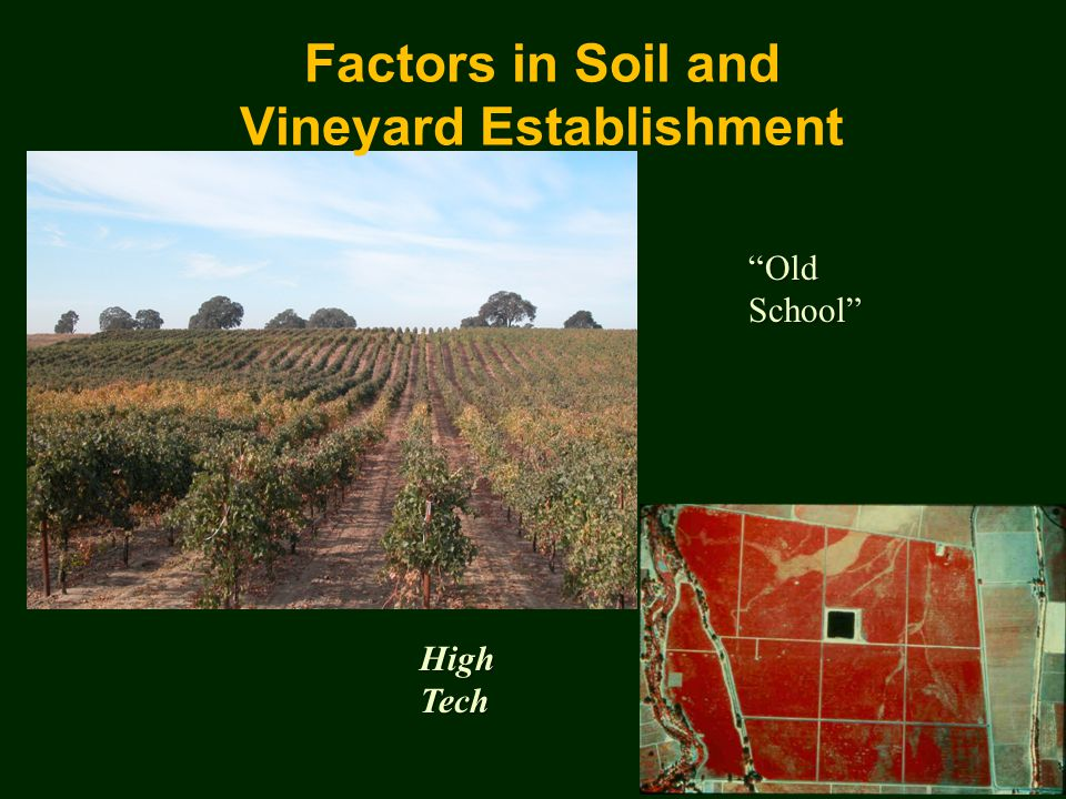 Old School High Tech Factors in Soil and Vineyard Establishment
