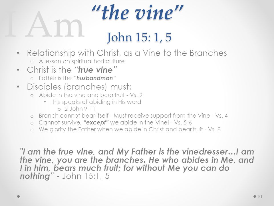I Am the vine John 15: 1, 5 Relationship with Christ, as a Vine to the Branches o A lesson on spiritual horticulture Christ is the true vine o Father is the husbandman Disciples (branches) must: o Abide in the vine and bear fruit - Vs.