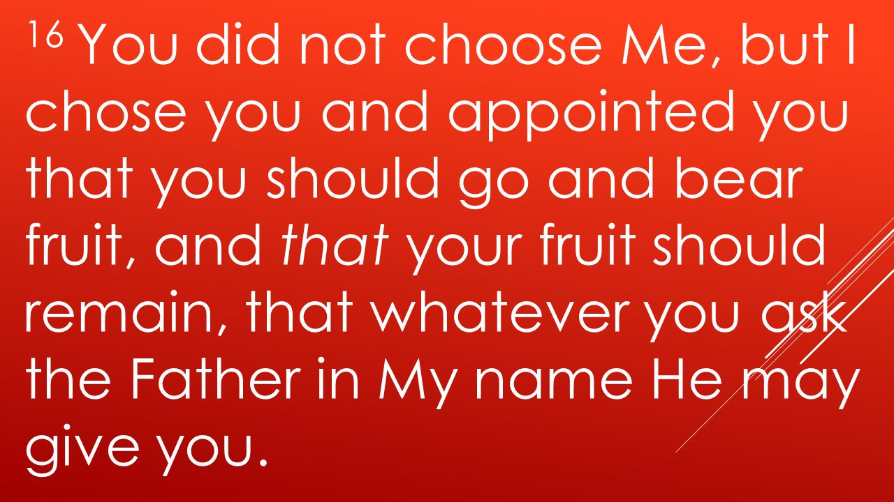16 You did not choose Me, but I chose you and appointed you that you should go and bear fruit, and that your fruit should remain, that whatever you ask the Father in My name He may give you.