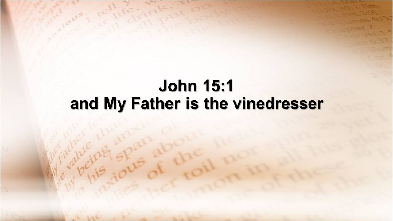 John 15:1 and My Father is the vinedresser