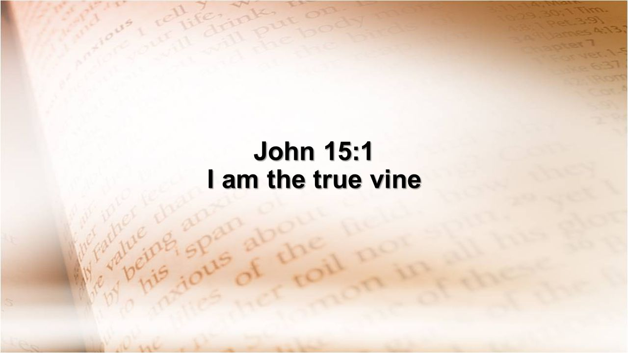 John 15:1 I am the true vine