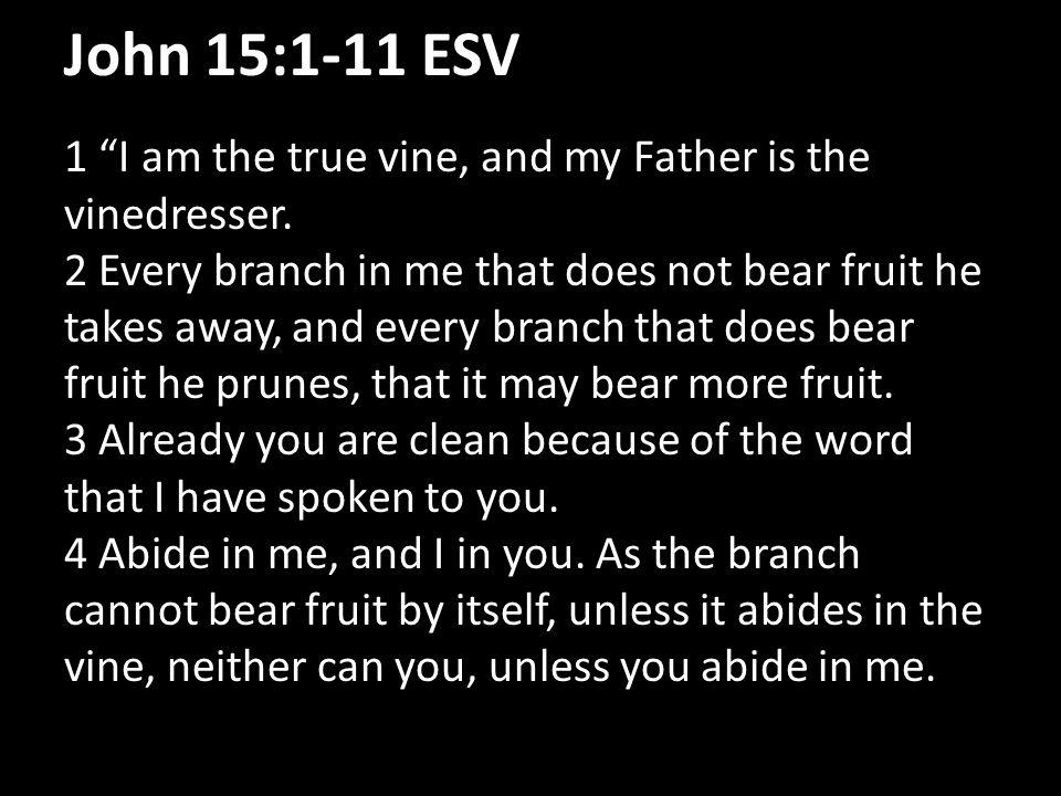 John 15:1-11 ESV 5 I am the vine; you are the branches.