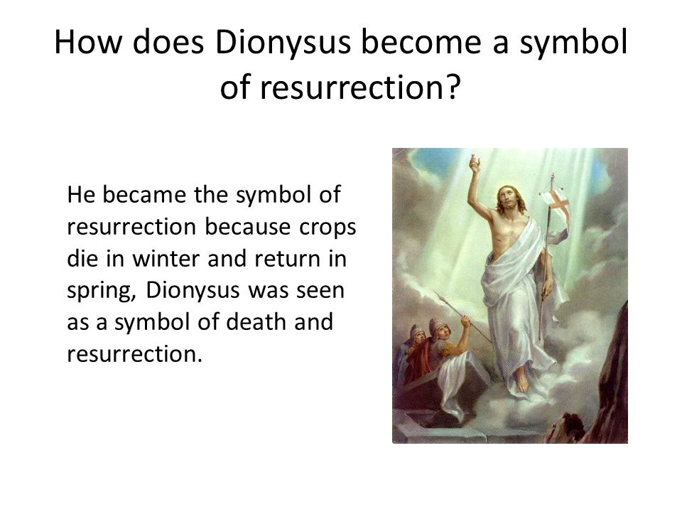 How does Dionysus become a symbol of resurrection? He became the symbol of resurrection because crops die in winter and return in spring, Dionysus was